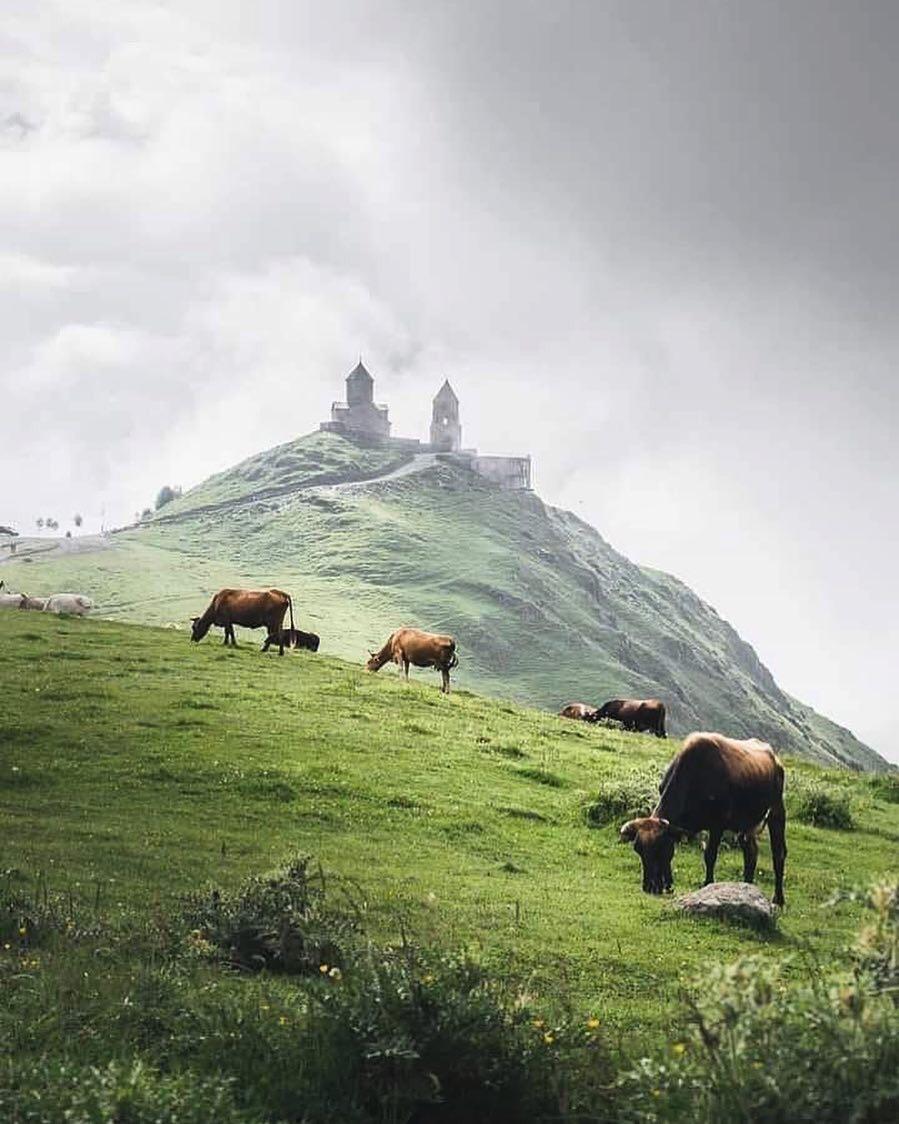 Gürcistan dağlarına seyahat